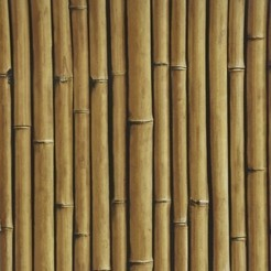 Covers_Elements_Bamboo Buzz_macademia25_k.jpg